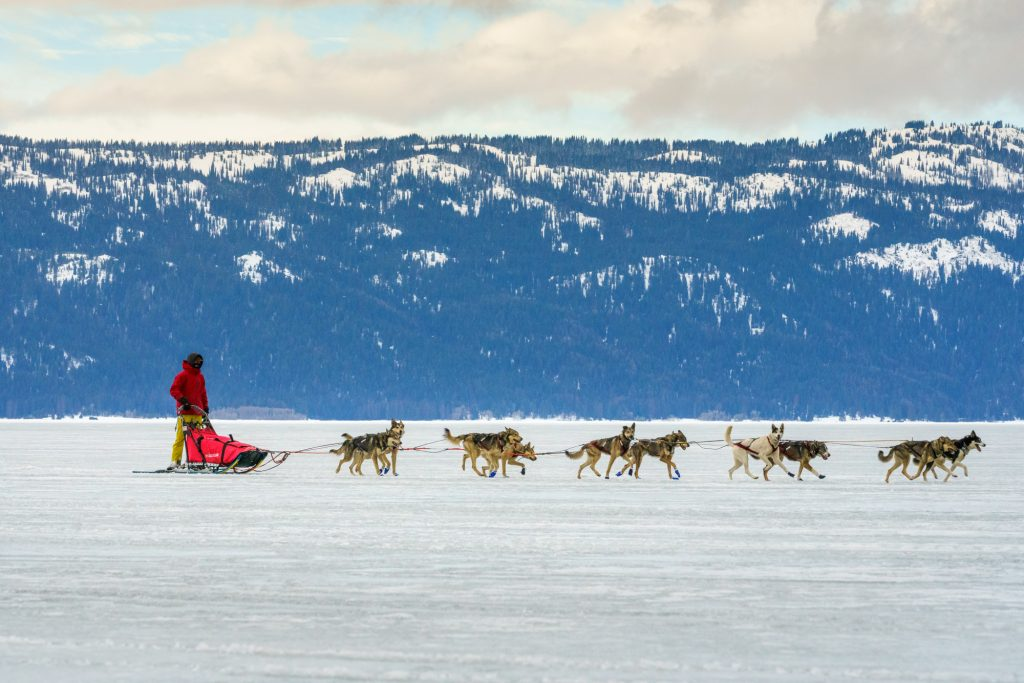 Crossing the lake during the Idaho Sled Dog Challenge