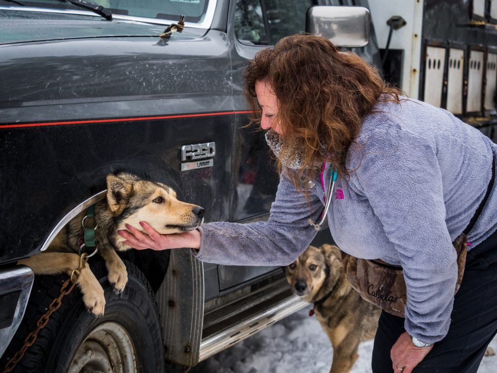 Vet Check Idaho Sled Dog Challenge