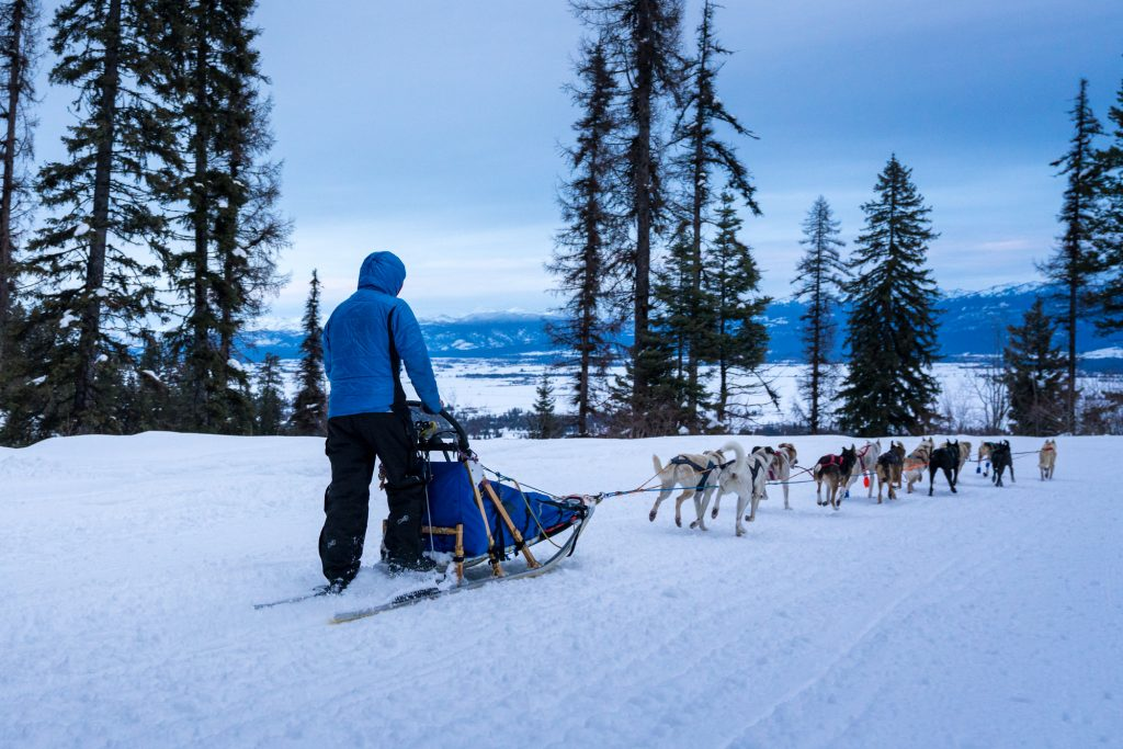 Platt Checkpoint Idaho Sled Dog Race 2018