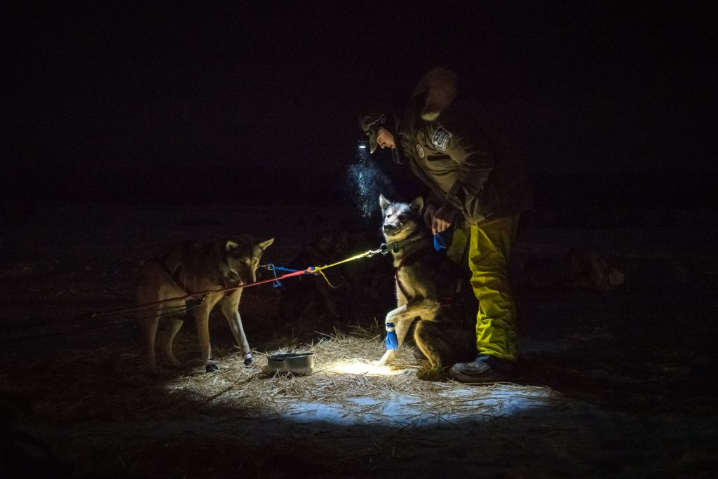 Idaho Sled Dog Challenge, McCall, Idaho