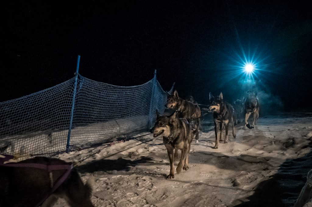 2018 Finish Line Idaho Sled Dog Challenge