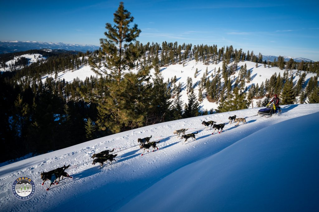 View from the trail during the 2019 Idaho Sled Dog Challenge in McCall Idaho