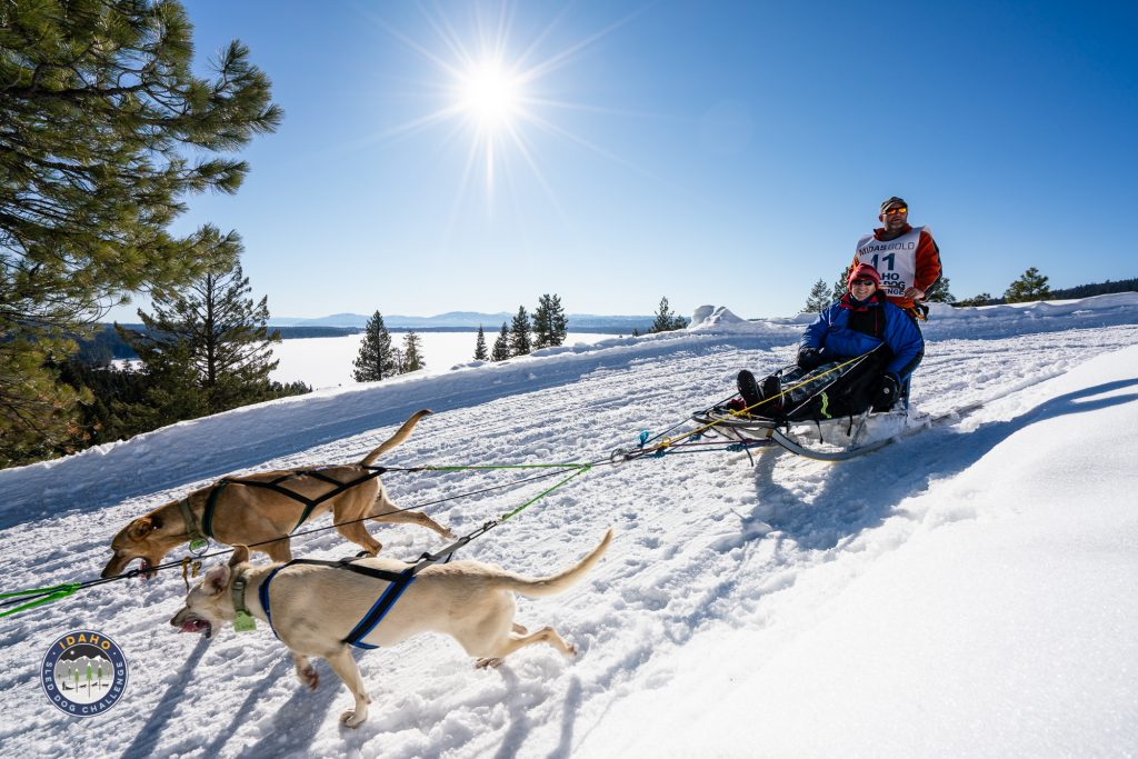 2019 Idaho Sled Dog Challenge Ceremonial Start at Ponderosa State Park in McCall, Idaho