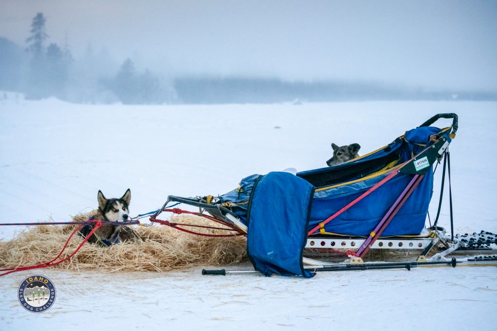 Check Points in the 2019 Idaho sled dog Challenge race